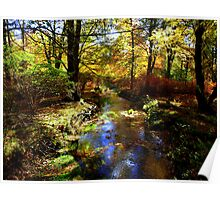 COLOURS OF THE AUTUMN Poster