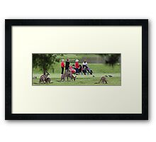 4 Over 5 Handicap! Framed Print