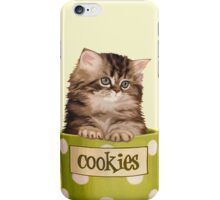 Funny Kitten iPhone Case/Skin