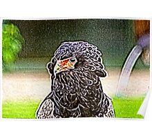 Batlic Eagle Poster