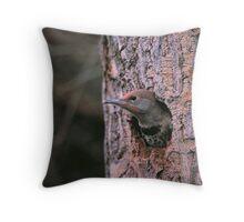 FLICKER IN TREE CAVITY Throw Pillow