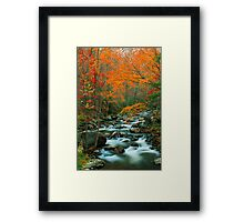 MIDDLE PRONG LITTLE RIVER,AUTUMN Framed Print