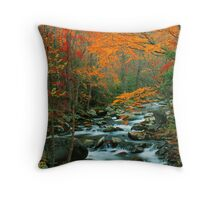 MIDDLE PRONG LITTLE RIVER,AUTUMN Throw Pillow