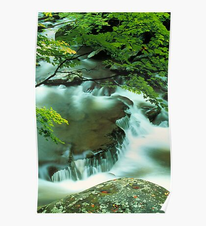 MIDDLE PRONG LITTLE RIVER Poster