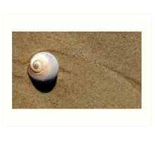 Gifts from the Sea... Art Print