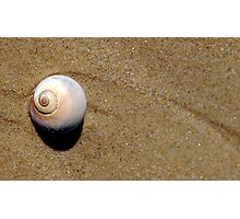Gifts from the Sea... Photographic Print