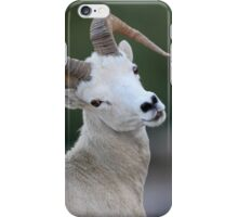 Young Ram iPhone Case/Skin