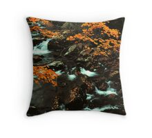 MIDDLE PRONG LITTLE RIVER Throw Pillow