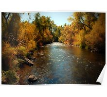Provo River, Autumn Colors Poster