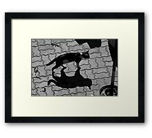 Maroc - Chat d'ombre Framed Print