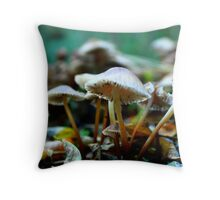 Chilly day  Throw Pillow