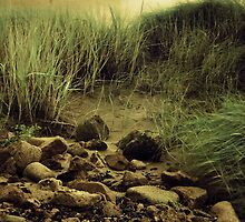 Grass, Rocks and Sand by PaulBradley