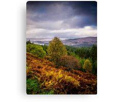 Loch Loyne Canvas Print