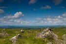 Simply Dartmoor by DonDavisUK