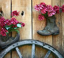 Recycling An Old Pair Of Boots by CarolM