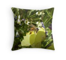pollen hunt Throw Pillow