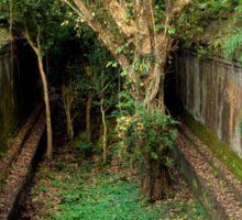 Jungle Temple Ruins in Cambodia Sticker