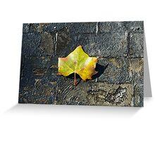 Leaf on a Bridge Greeting Card