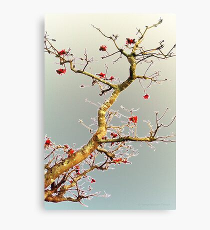 Blooming Red, Oriental Style Canvas Print