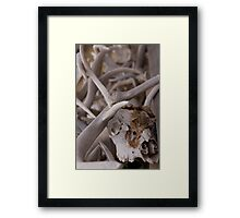 Aged and Weathered Framed Print