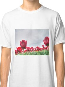 Red tulips 4 Classic T-Shirt