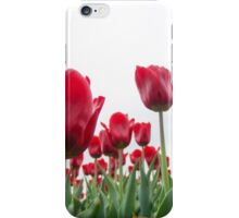Red tulips 5 iPhone Case/Skin