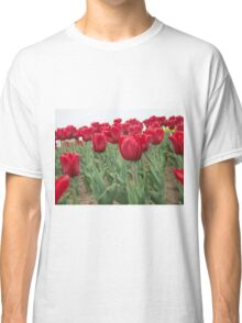 Red tulips 6 Classic T-Shirt
