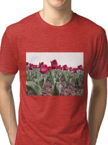Red tulips 8 Tri-blend T-Shirt