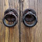Door Knockers  by John  Kapusta