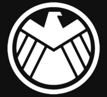 Agents of S.H.I.E.L.D. Level 5 by prunstedler