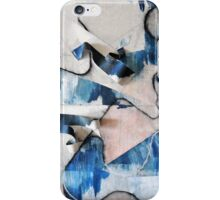 Earth, Air, Water, Fire iPhone Case/Skin