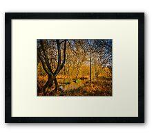 Kintbury Marshes Framed Print