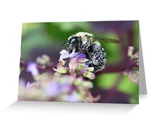 I'm full of Pollen Greeting Card