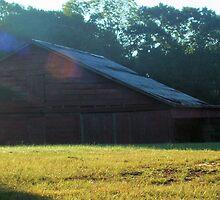 Upson County Barn by Michael McCasland