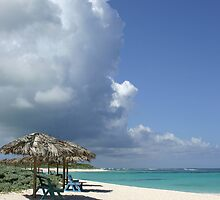 Anegada Beach by DARRIN ALDRIDGE