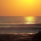 Ocean City 23 by Nancy Polanski