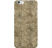 Egyptian Hieroglyphics iPhone Case/Skin