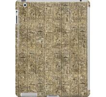 Egyptian Hieroglyphics iPad Case/Skin