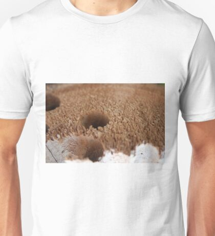 Home to the Wood Boring Bees Unisex T-Shirt