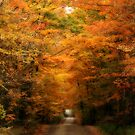 Country Road by BigD