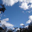 skyscape by KazM