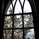 Window by Steve Hunter