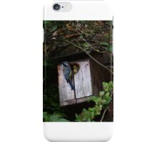 Rise of the Nature iPhone Case/Skin