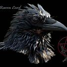 """The Raven Lord"" by Val  Brackenridge"