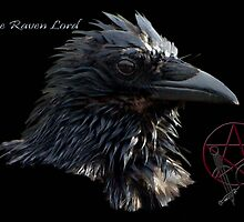 """The Raven Lord"" by NaturePrints"