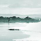 Wategos Beach by Caprice Sobels