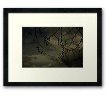 Darksome Framed Print