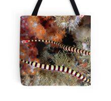 Banded Pipefish Tote Bag