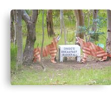 Aussy comedt a dingoes breakfast Canvas Print