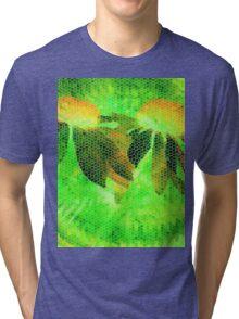 Lemon Lime-Available As Art Prints-Mugs,Cases,Duvets,T Shirts,Stickers,etc Tri-blend T-Shirt